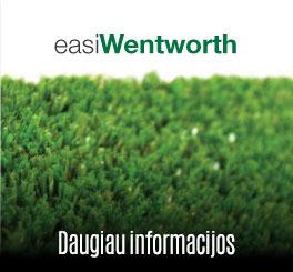 Easi Wentworth